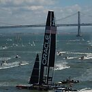 """The USA Oracle wins the America's Cup"" by DonnaMoore"