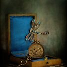 Time Flies by Janet Walters