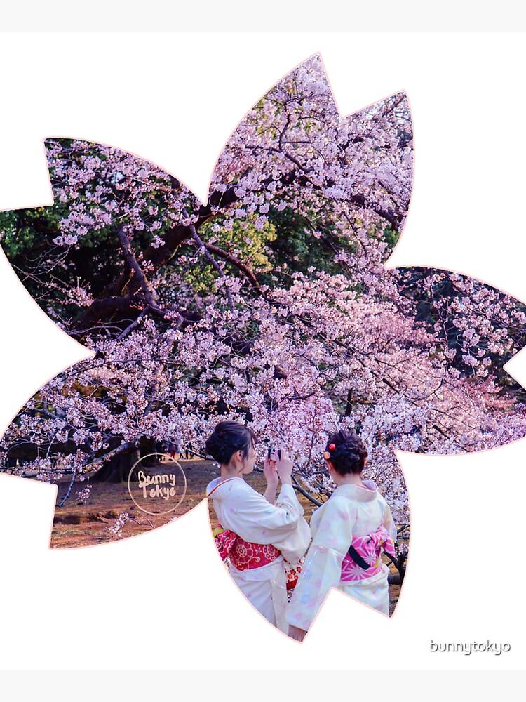 Hanami in Tokyo - Sakura by bunnytokyo