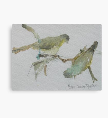 Green Finches Canvas Print