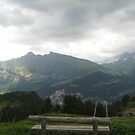Sit with Me and Watch the World - Alps, CH by Danielle Ducrest
