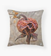 Winter Beach Rose Hips (Rosa rugosa) Throw Pillow