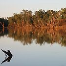 Outback Serenity - Sunset on the Balonne by Michelle Munday