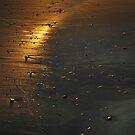 bridge of gold by NordicBlackbird