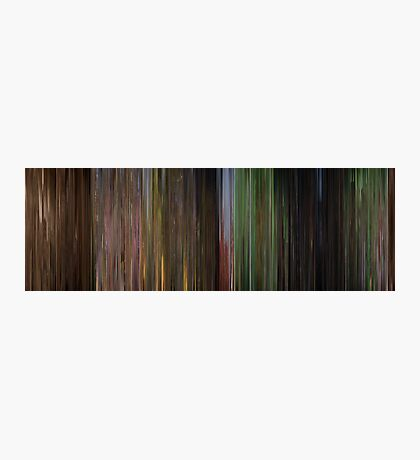 Moviebarcode: The Wizard of Oz (1939) Photographic Print