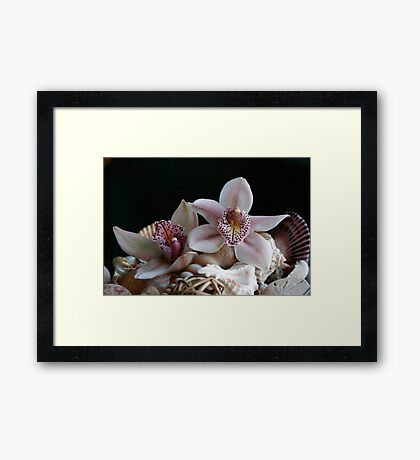 On Top of the Heap Framed Print