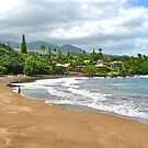 Hana Beach by David Davies