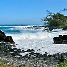 Keanae Point III by David Davies