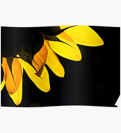 Yellow on Black Poster