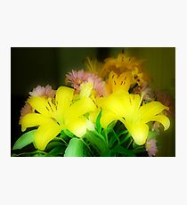 Yellow Lilies Orton Effect Photographic Print