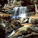 B. Reynolds Falls In Ricketts Glen circa 1979 by Paul Gitto