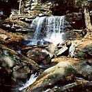 B. Reynolds Falls In Ricketts Glen circa 1979 by Paul Gitto