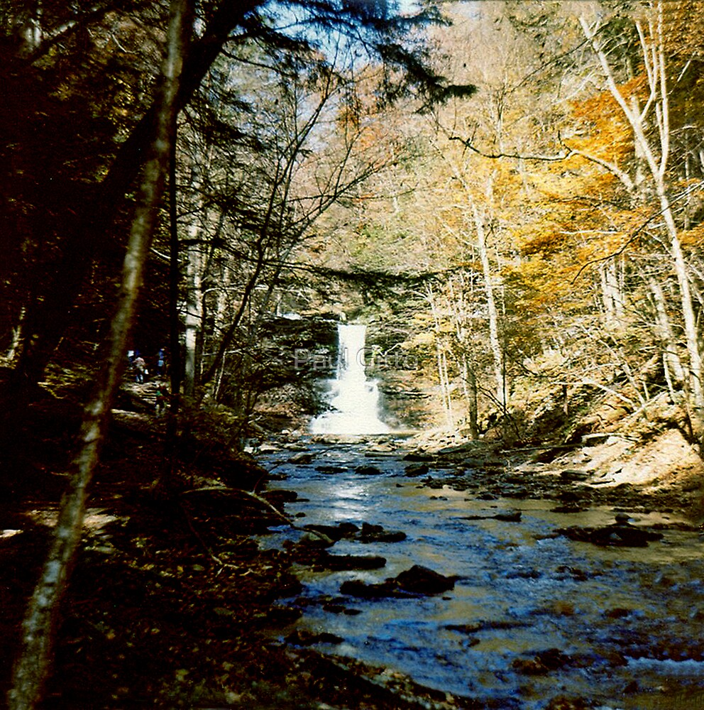 Sheldon Reynolds Falls In Ricketts Glen circa 1979 by Paul Gitto