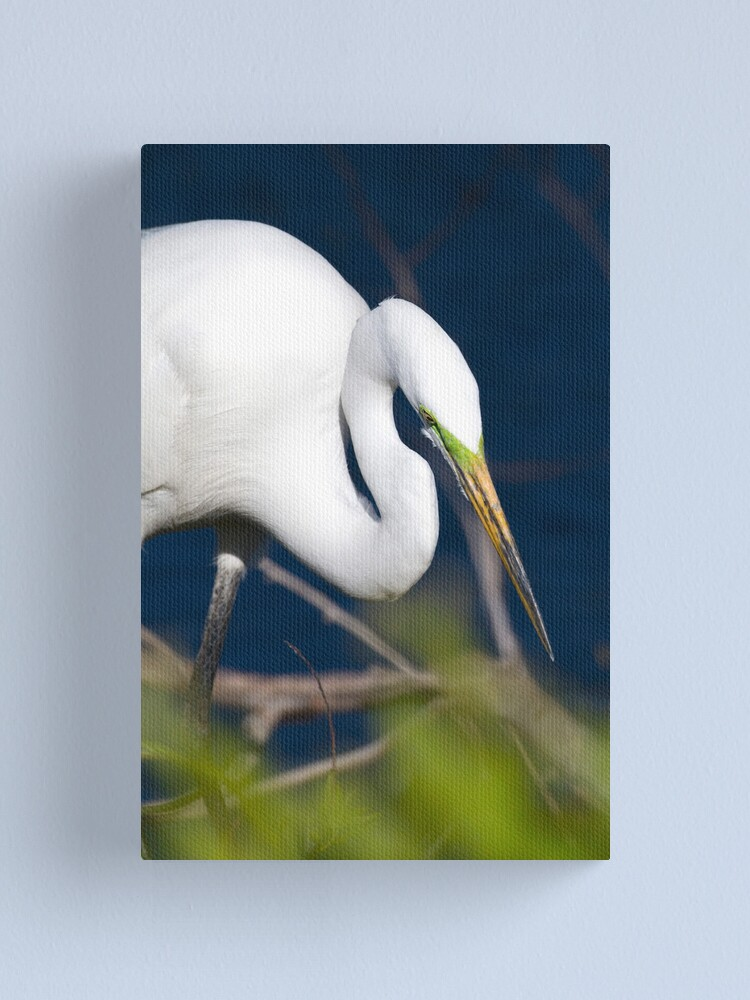 Alternate view of Hunting... Canvas Print