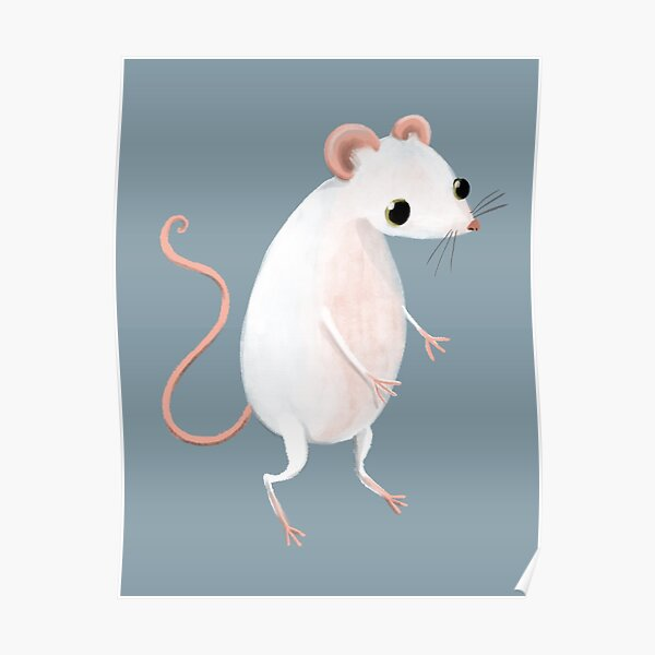 Cute little white mouse Poster