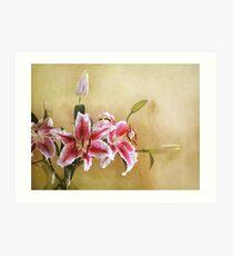 Star Gazer Lilies I Art Print