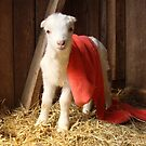 Brand New Goat,New Blanky, New Day at the FARM by RealPainter