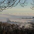Foggy Fields - South Hams, Devon by moor2sea