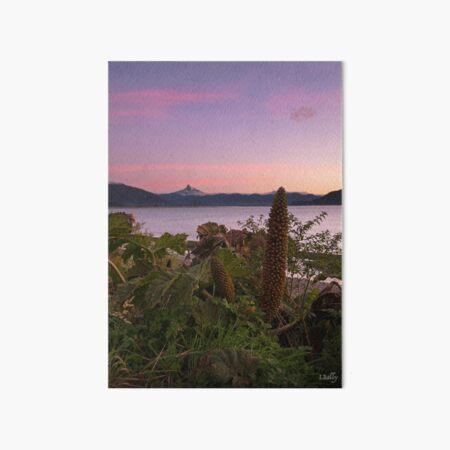 Corcovado at sunset Art Board Print
