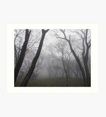 Eerie trees in mist Art Print