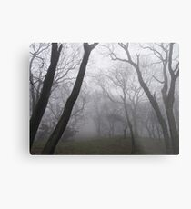 Eerie trees in mist Metal Print