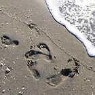Footprints in the Sand von Rosalie Scanlon