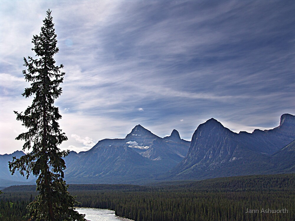 Athabasca River and the Rockies by Jann Ashworth