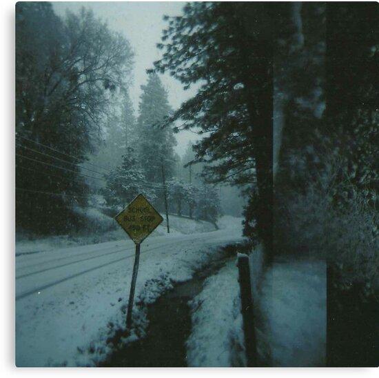 through the snowy road. by Stephanie Welling