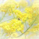 Little bee by aMOONy