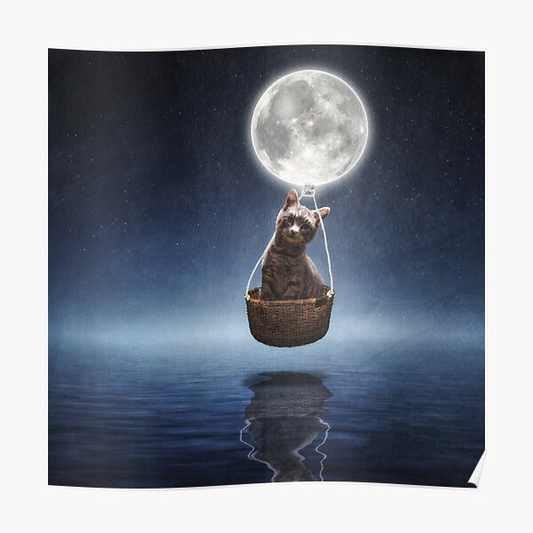 By the Light of the Moon Poster