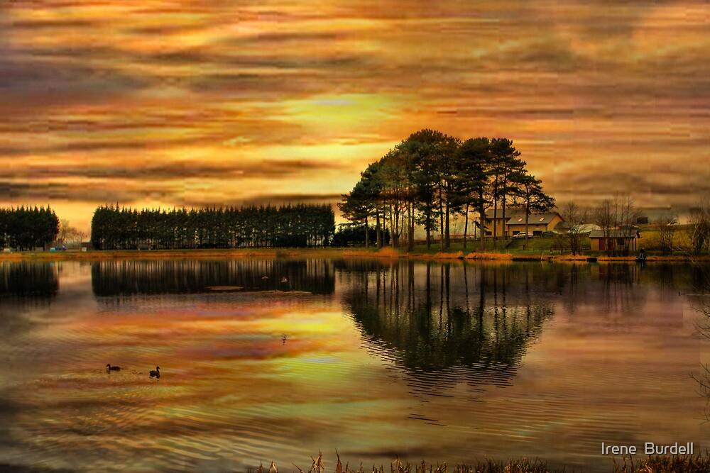Sunset !! by Irene  Burdell