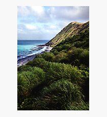 Coastal View, Maquarie Island Photographic Print