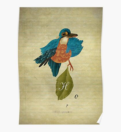Indigo kingfisher's hope Poster