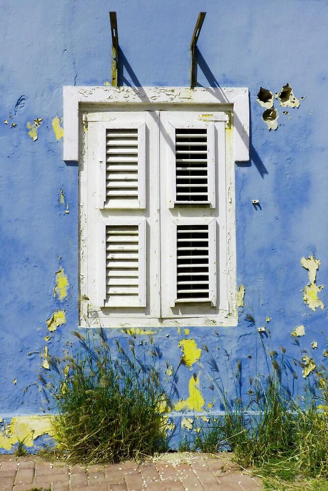 Bonaire - Shuttered Window by julieelucas