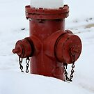 Winter Fire Hydrant by Nick Jermy