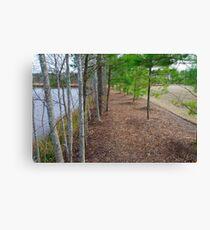 Fancy Cary Suburb landscape Canvas Print