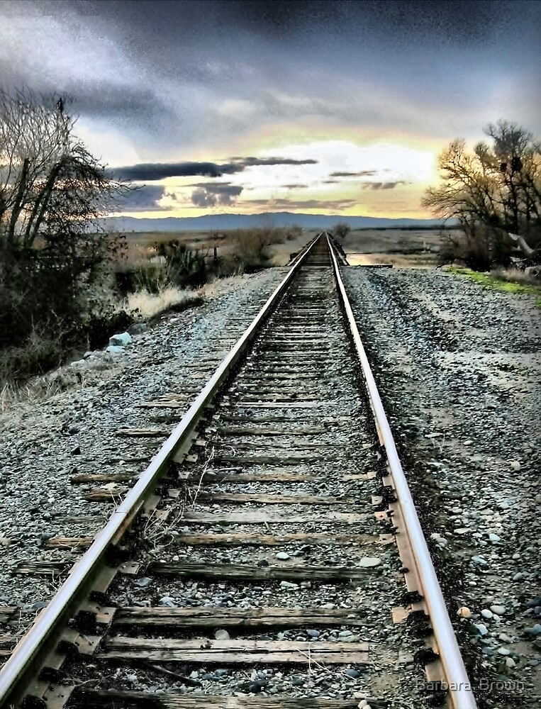 Lonesome Rails by Barbara  Brown