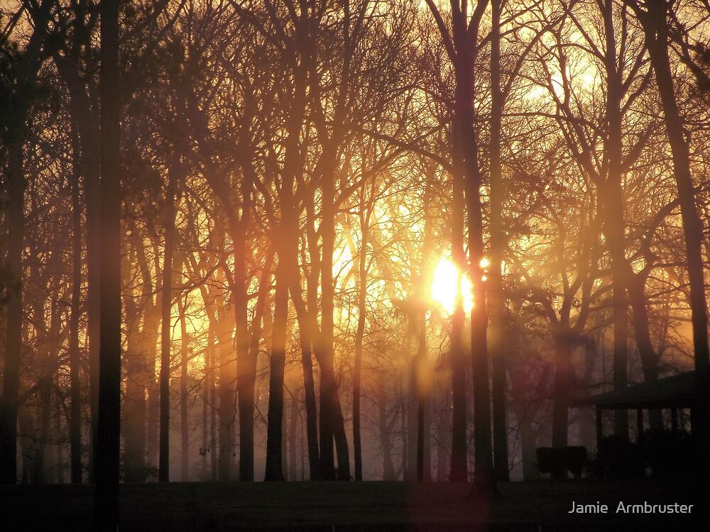 Firey Sunrise by Jamie  Armbruster