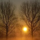 Sunrise on Mist by Laura-Jane Shepherd