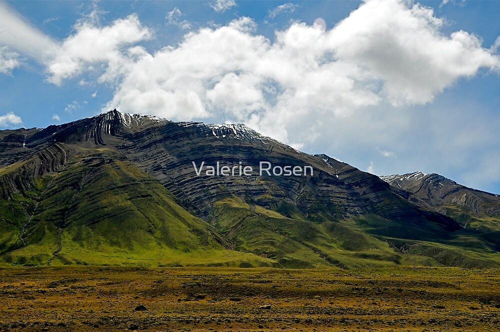 El Chalten, Patagonia, Argentina II by Valerie Rosen