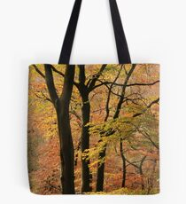 Autumn in Silent Valley Tote Bag