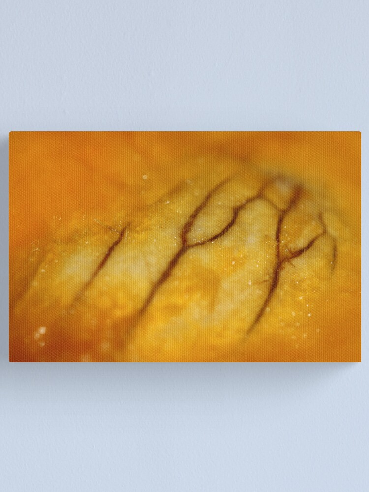 Alternate view of Veins (what is it?) Canvas Print