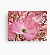 Tree Flowers Pink Dogwood Blossoms Spring Baslee Troutman Canvas Print