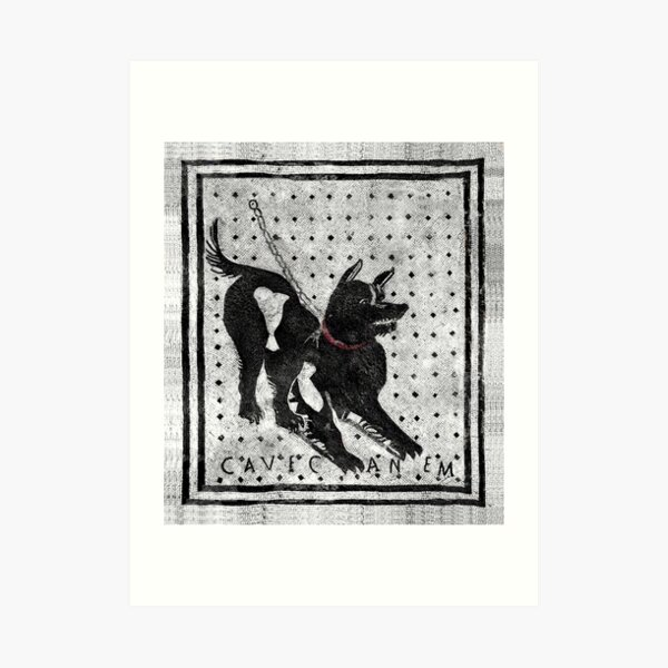 Cave Canem - Cuidado con el perro - Pompeya Latin Mosaic Lámina artística