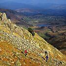Views down to little Langdale by Shaun Whiteman