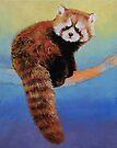 Cute Red Panda by Michael Creese