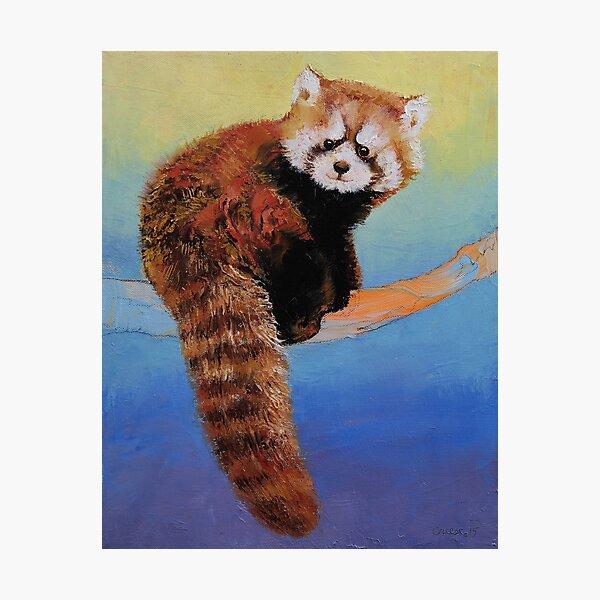 Panda rouge mignon Impression photo