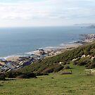 Rocky low water coastline - Nr Yealm Estuary by moor2sea