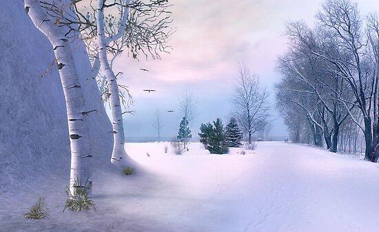 beneath a winter dawn by John Poon