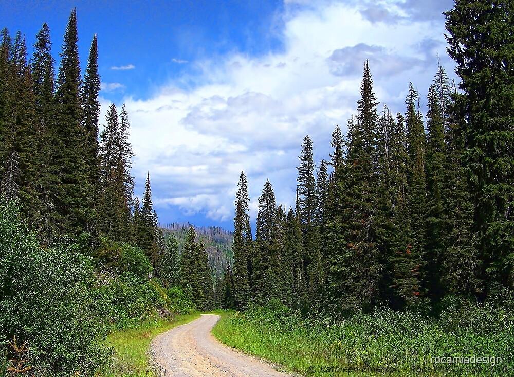Bear Country (Big Mountain Ski Resort) by rocamiadesign